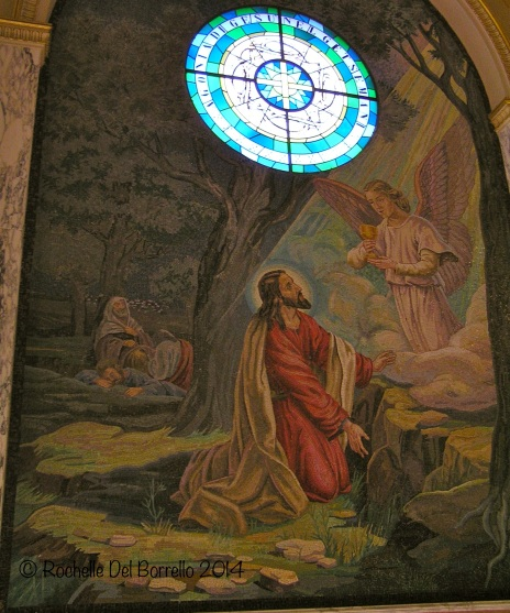 Friday Photo: Gethsemane