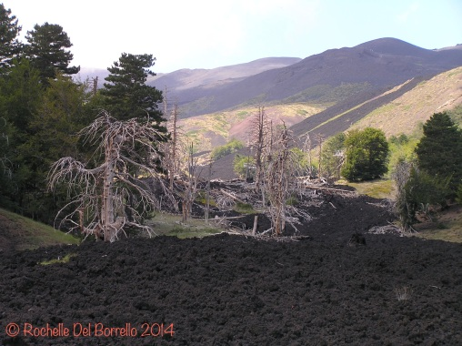 Etna North lava flow