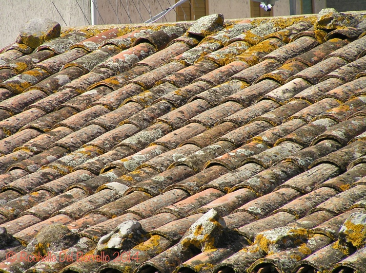 Sicilian Rooftops