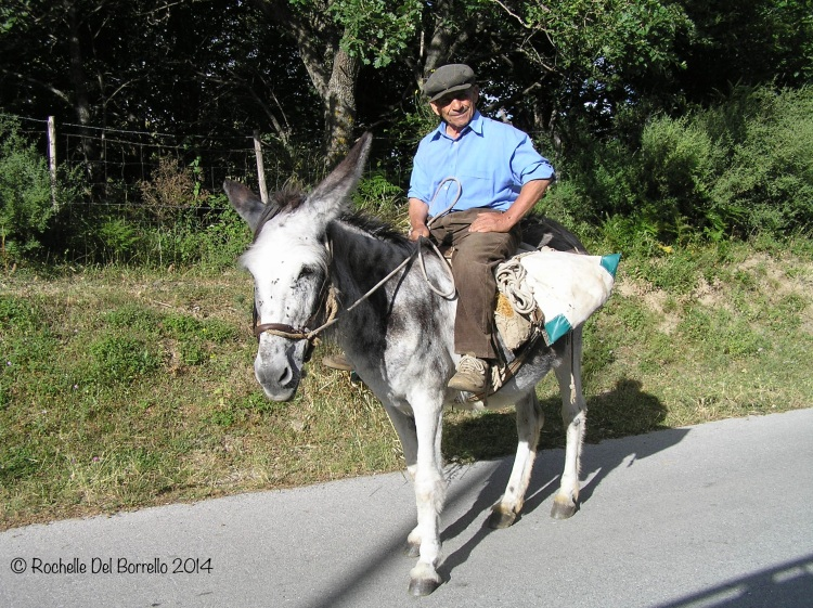 Man riding on a donkey province of Messina