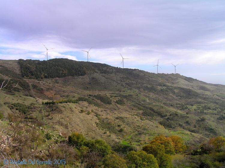 Nebrodi Turbines