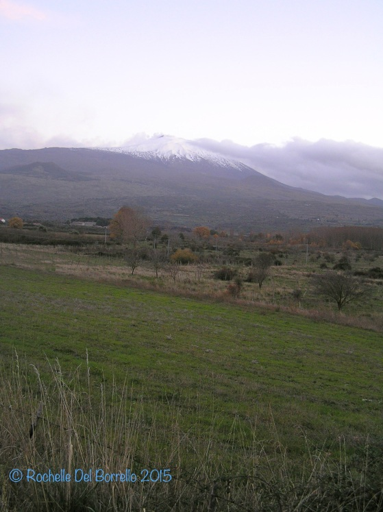 Etna from the countryside near Maniace