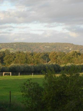 Serpentine Jarradale W.A 2012